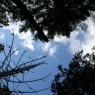 (2007-06) Skyward